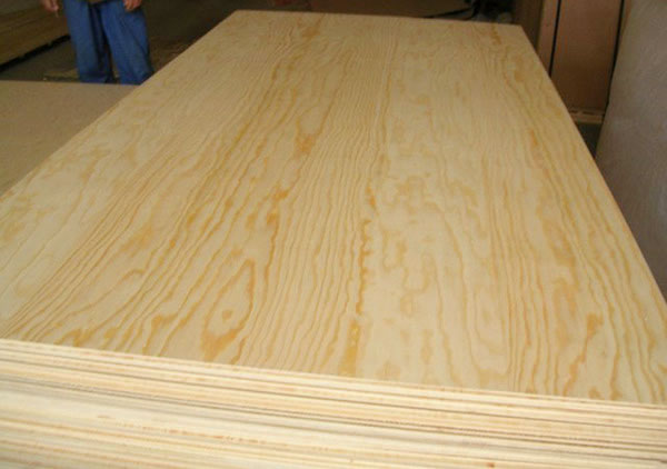 Radiata pine plywood import by buildpro for 33 iversen terrace christchurch
