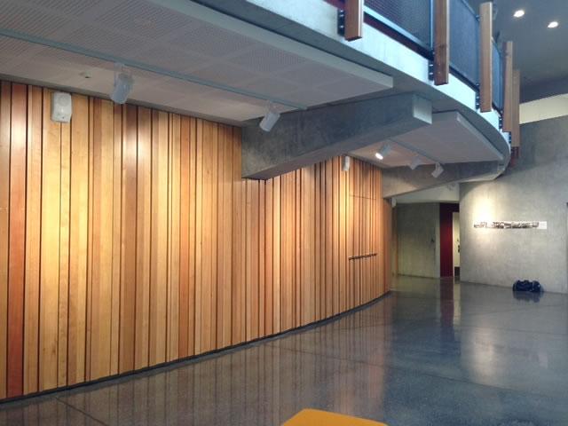 New Zealand Beech Timber